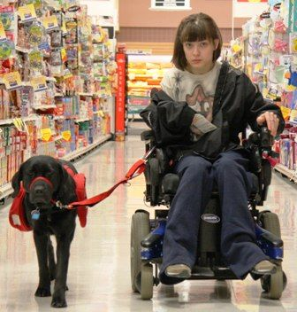 """I used to be the kid in the wheelchair, Now, I'm the kid with the amazing dog.""  Service dog pulling wheelchair***"