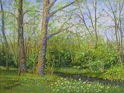 Trees beside the creek  sandy askey-adams psa