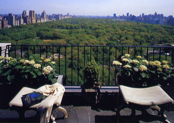 Central Park As Your Backyard Sigh Social Diary 12 07 04 New York Apartments Private Views Terrace Pinterest Parks And