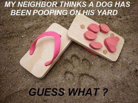 Confused Neighbor !!
