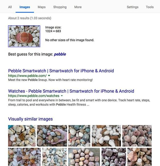 Nailed It Did A Reverse Image Search On Lithops And It Came Back