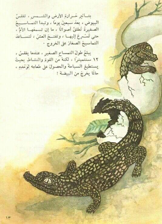 Pin By القراء On إصدارات دار ثقافة الأطفال العراقية Animals Lizard