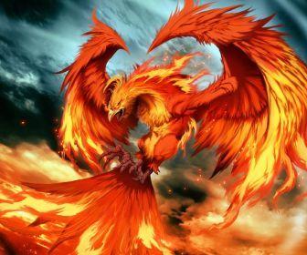 flames birds phoenix artwork HD Wallpaper