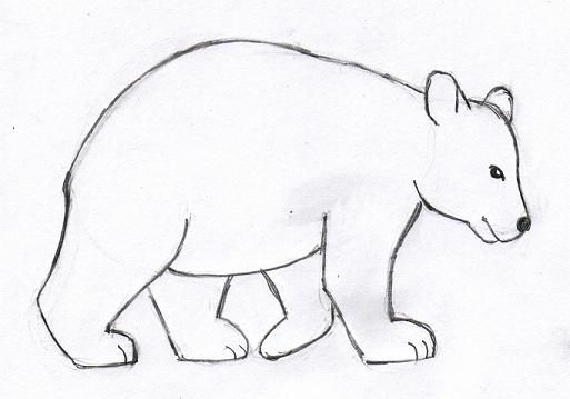 Image Result For How To Draw Animals Easy Polar Bear Step By Step Bear Drawing Step By Step Drawing Animal Drawings