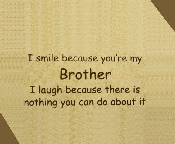 Funny Quotes About Brothers: Funny Quotes About, I Love My Brother And Boys On Pinterest