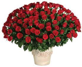 el rincon de mayka: Mis Flores: