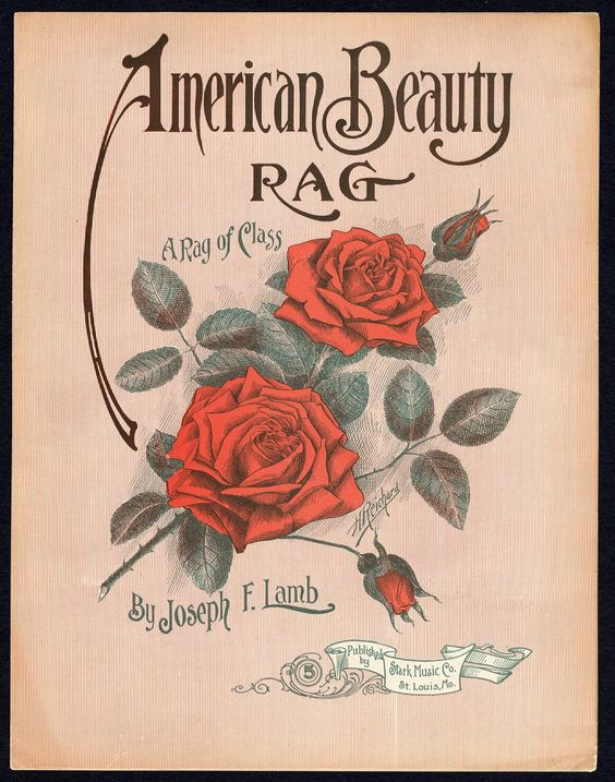 Vintage Ephemera- American Beauty