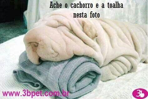 Cade a toalha?