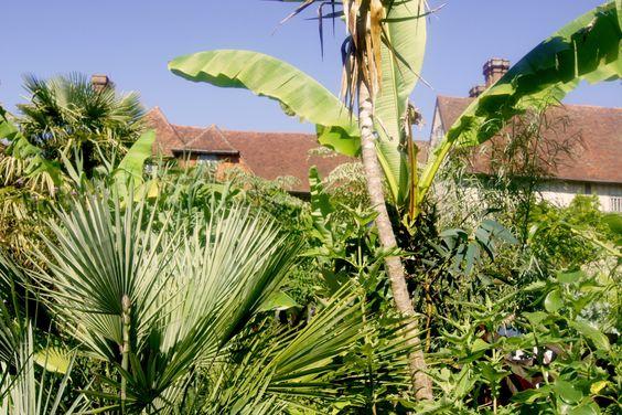 Exotic Garden at Great Dixter Gartenpraktikum Tag 29, 25.07.16 Es ist ein Garten der im (Spät-) Sommer und im Herbst einen tropischen Effekt besitzt und genau in dieser Zeit habe ich ihn besucht un…