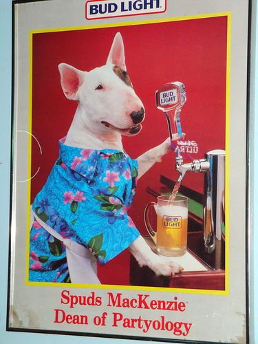 Budweiser Spuds Mackenzie
