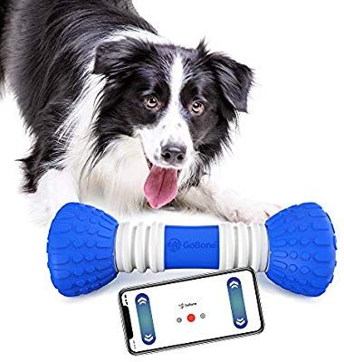 Amazon Com Gobone Interactive App Enabled Smart Bone For Dogs