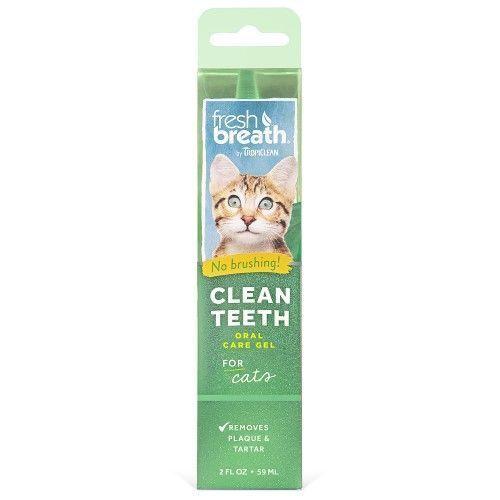 8 Lebensmittel Frauen Sollten Beim Abnehmen Niemals Essen Zahneputzen Zahnpflege Mundpflege