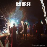 Holloway (Hey, Love) by Wildcat! Wildcat! on SoundCloud