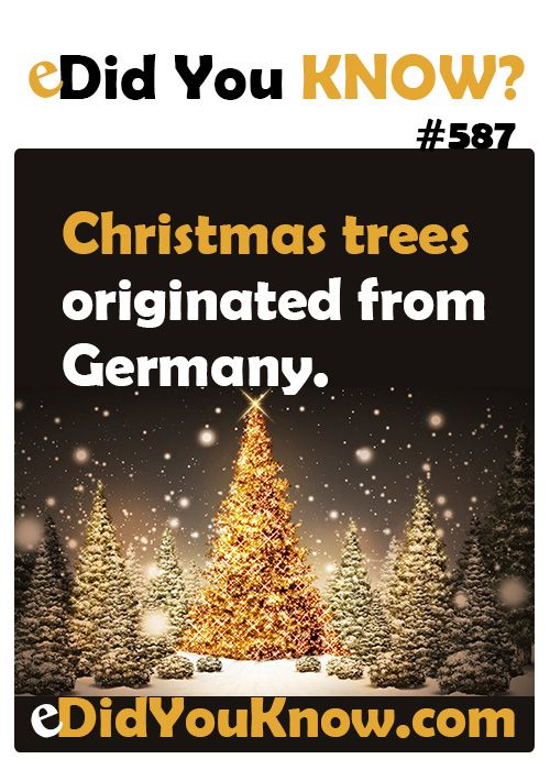 Http Edidyouknow Com Did You Know 587 Christmas Trees Originated From Germany With Images Funny Mind Tricks Did You Know Facts Fun Facts