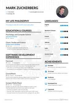 Mark Zuckerberg Software Developer Resume Example Enhancv Infographic Resume Resume Examples Civil Engineer Resume