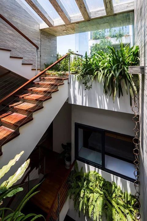 S House House Architecture Design Modern Tropical House Architecture House