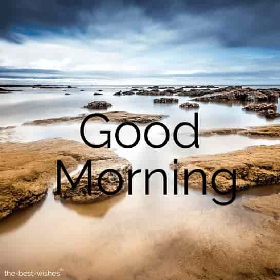 150 Fresh Beautiful Good Morning Images With Nature Good Morning Images Good Morning Nature Good Morning Picture