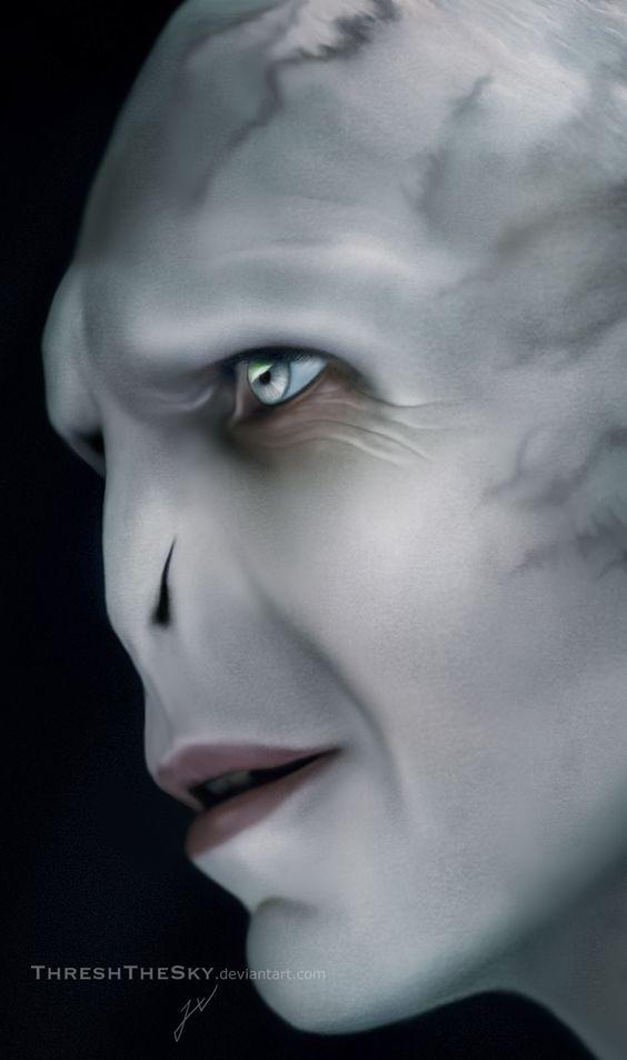 Harry Potter: Lord Voldemort by ThreshTheSky.deviantart.com on @DeviantArt