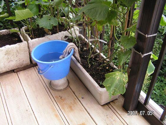 バケツ自動給水器 : 家庭菜園と炭焼き