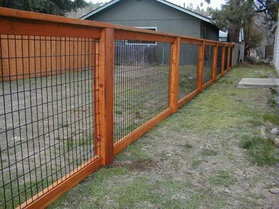 The stained wood on this fence looks more stylish but it doesn't cost much different. It also has wire woven through it instead of attached on the back that's wider.