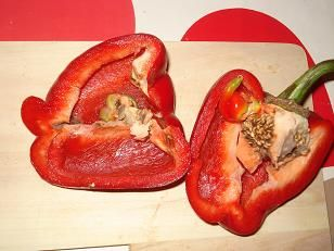 Comment faire pousser des graines de poivrons sur son balcon jardinage pinterest comment - Comment planter des poivrons ...