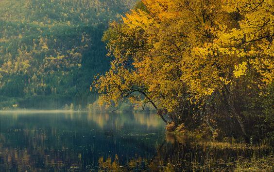 Autumn in Volda by Jose Eduardo Garcia Aldama on 500px