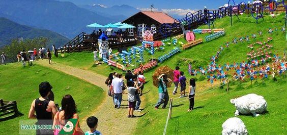 Nông trại thu hút rất nhiều du khách