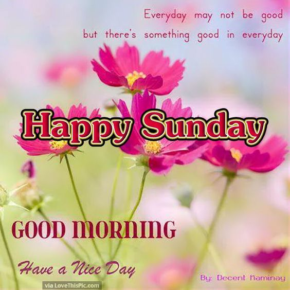 Happy Sunday Good Morning Have A Nice Day