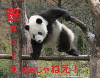 Save the world!! 笹食ってる場合ではありません!