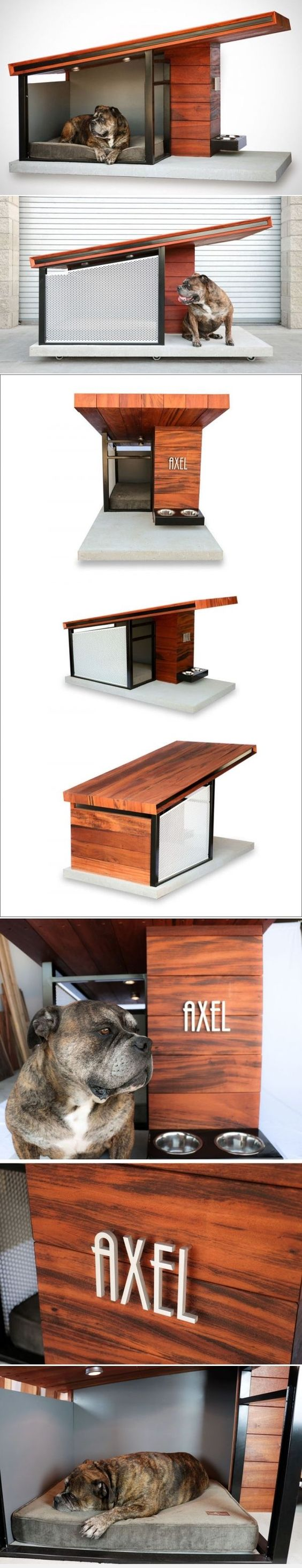 pinterest • the world's catalog of ideas - explore modern dog houses small modern house and more