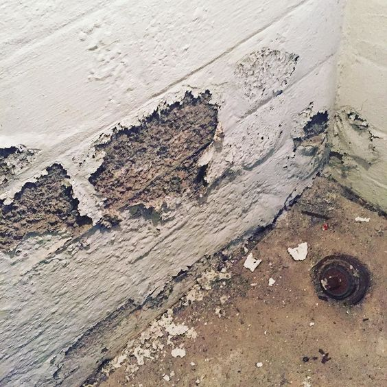 Drylok Doesn't Last - Rochester NY Water Damage #roc #rochesterny #waterdamage #waterproofing