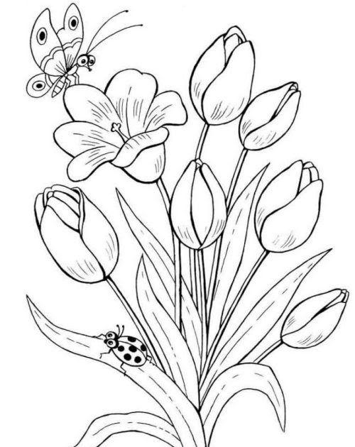 Terkeren 12 Gambar Bunga Sederhana Dari Pensil Di 2020 Lukisan