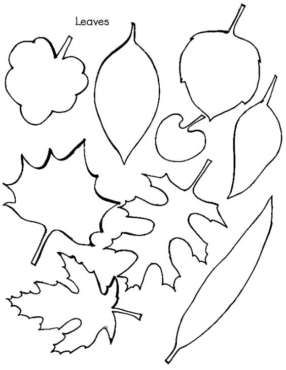 thankful leaves printable | ... feel free to print out the tree template and leaf templates I found