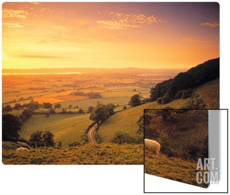 Coaley Peak, Dursley, Cotswolds, England Metal Print by Peter Adams at Art.com