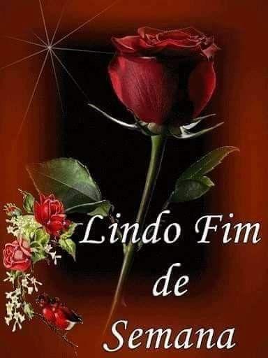 Pin De Eugenio Neto Em Sexta Feira Bom Dia Rosa Fotos De Boa
