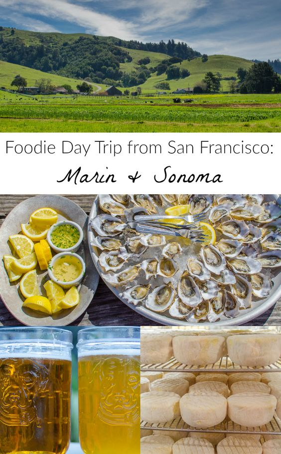 The perfect San Francisco day trip & foodie travel destination: Visit local cheesemakers, oyster farms, and breweries in Marin and Sonoma Counties