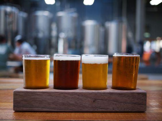 Bier-Links 2013