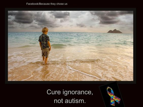 Cure ignorance, not autism