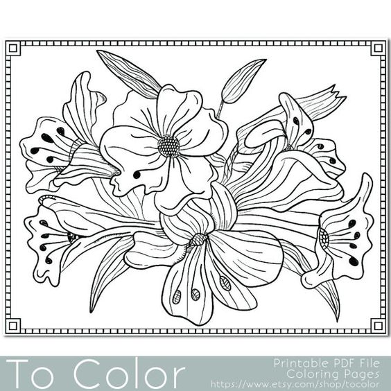 Grown Up Coloring Pages Pdf : Pinterest the world s catalog of ideas