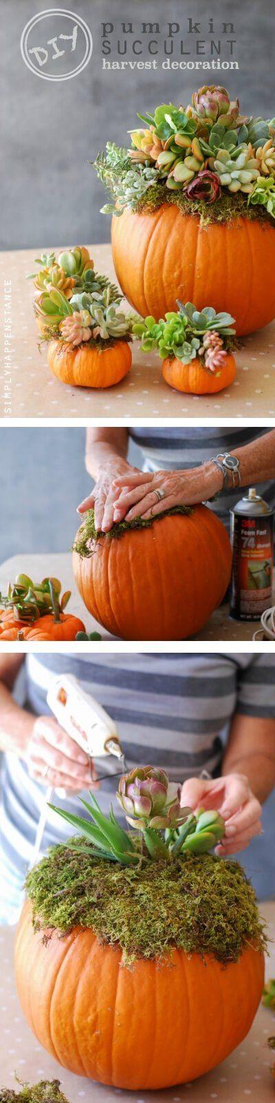 Pumpkin Succulent Harvest | Best DIY Fall Centerpiece Ideas | FarmFoodFamily.com