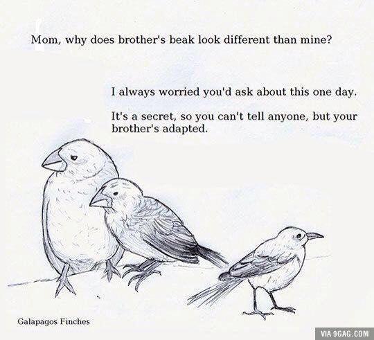 ahhh, Biology jokes.