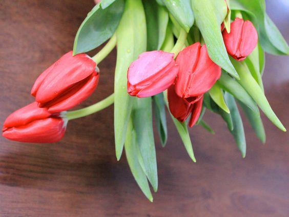 significado de 21 flores