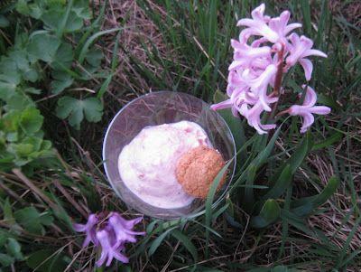 Sauerkirsch-Joghurt-Eis *