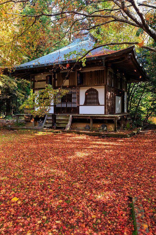 秋の壁紙・神社