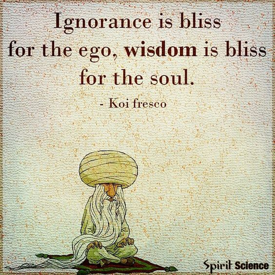 Ignorance is not bliss; our soul's very purpose is to grow, learn and expand!    #purpose #soul #love #life #bliss #spiritscience