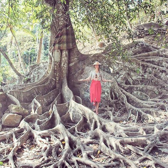 Travel is one of these things that you can buy and you never regret .. it makes you richer  #travel #banyantree #TheBaliGuru #bali #tree #view #amazing #roots #island #magic #spirit : @chodakowskaewa by thebaliguru