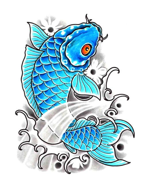 Baby blue koi fish 501 649 back cover up for Baby koi fish