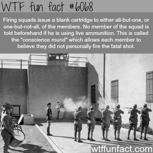 Firing Squads - WTF fun facts