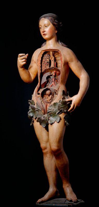 "From the ""Anatomie des Vanités"" exhibit at the Erasmus House in Brussels, Belgium. ""Venus,"" medical mannequin.:"