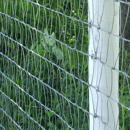 V Mesh Horse Fencing Helps Keeps Predators Out And Is Constructed From Class 3 12 5 Gauge And 14 Gauge Galvanized Wires Backyard Fences Easy Fence Modern Fence